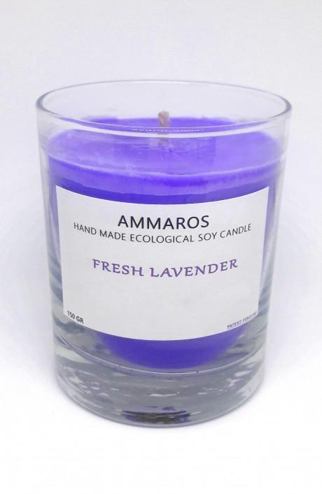 נר שעוות סויה ללא תכשיט Fresh Lavender
